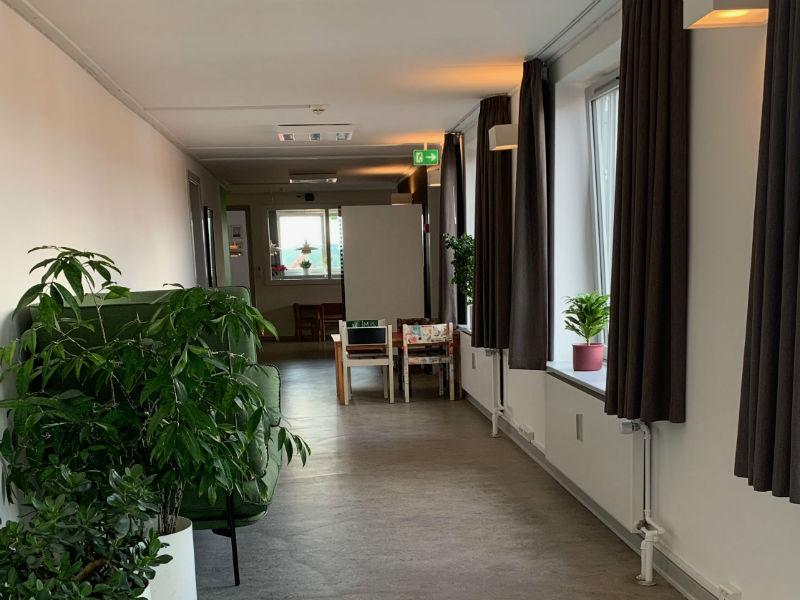 De varme gardiner, den bløder sofa, planter og varme LED pærer